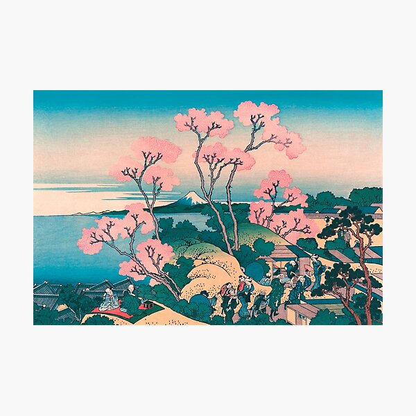 Spring Picnic under Cherry Tree Flowers, with Mount Fuji background Photographic Print