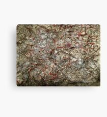 Polluted Graffiti  Canvas Print