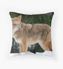 Yosemite Coyote 2 Throw Pillow