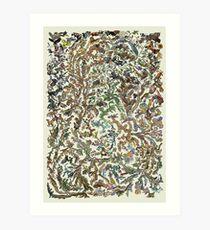 Tree of Life Poster - Animal Evolution - Colour Art Print