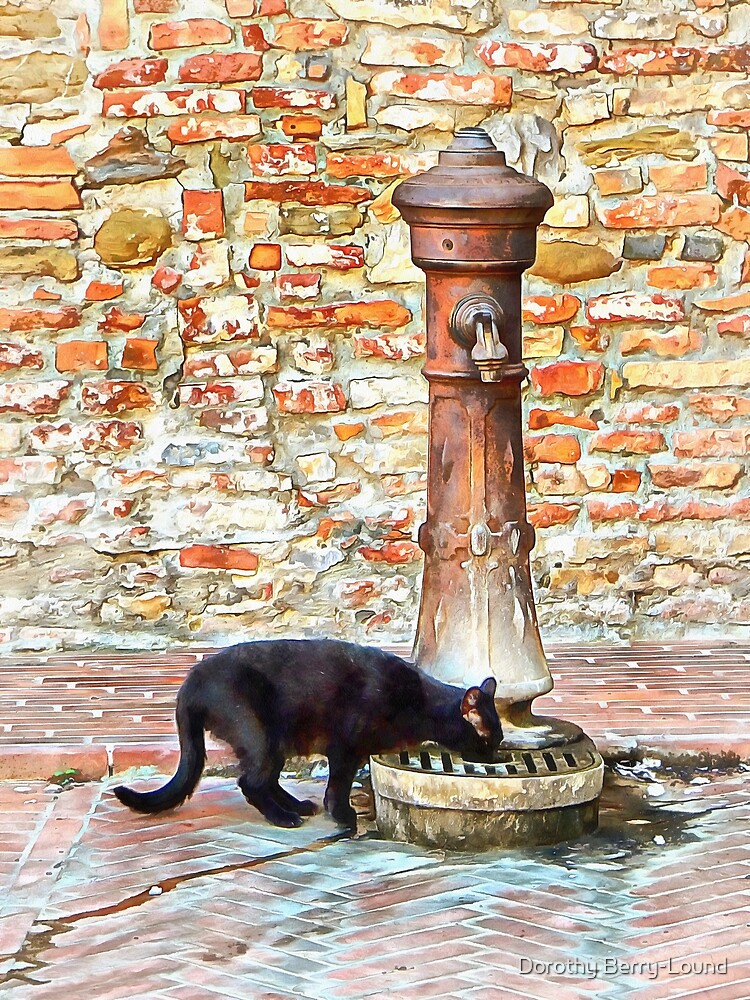 Thirsty Black Cat by ShannathShima
