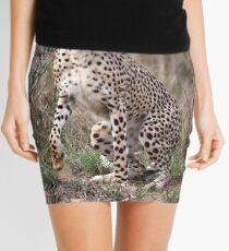 Spring to action ! Mini Skirt