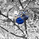 Blue Christmas ©  by Dawn Becker