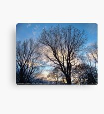 November Sky in Kalispell - West Canvas Print