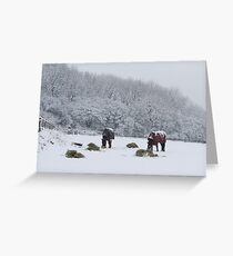 Tea time in the snow!!! Greeting Card