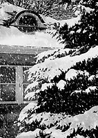Country Home Christmas ©  by Dawn Becker