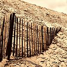 Fence - Dune of Pilat by Samantha Higgs