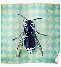 The hornet Poster