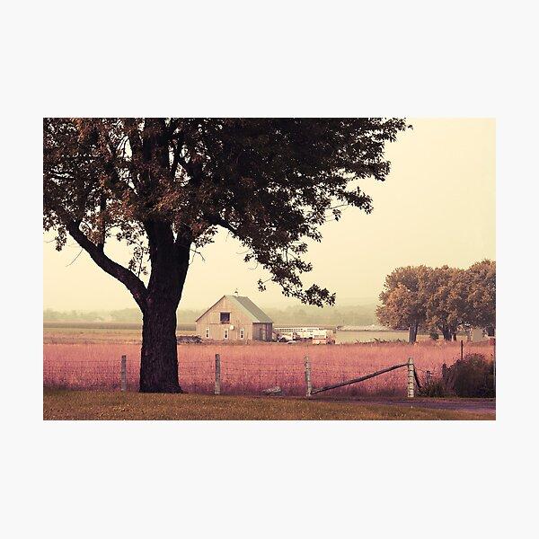 Countrylife Photographic Print