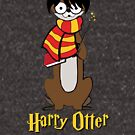 Harry Otter by TheFlying6