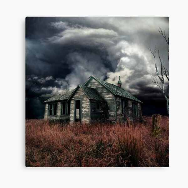 just before the storm  Canvas Print