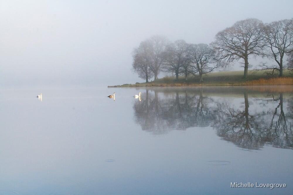 Esthwaite Swans by Michelle Lovegrove