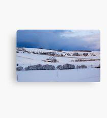 A Winter Landscape Canvas Print