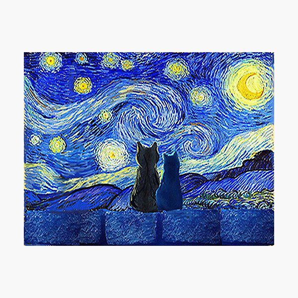 Cats and Starry Night Photographic Print