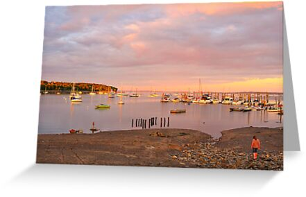 Sunset, Belfast, Maine by fauselr