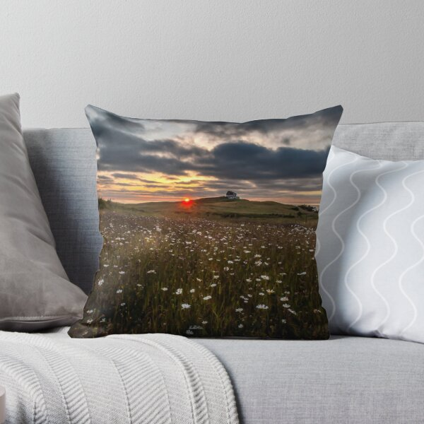 photograph fields of daisies at sunset in the Magdalen Islands Throw Pillow