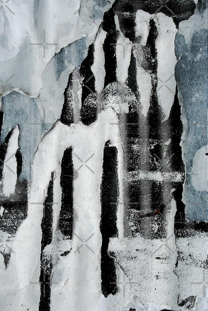 Arctic Animals by richman
