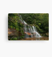 Katoomba Falls .. with green & orange Canvas Print