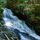 Waterfall on the Skagit River Trail by Michael Garson
