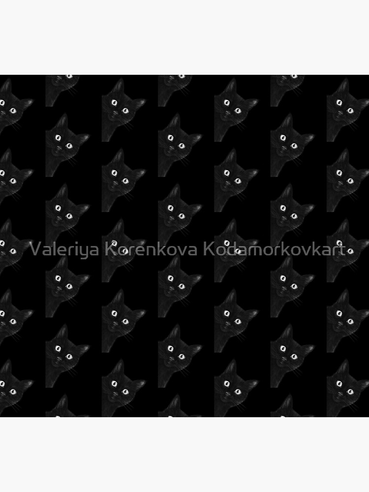 Black cat on black by kodamorkovkart