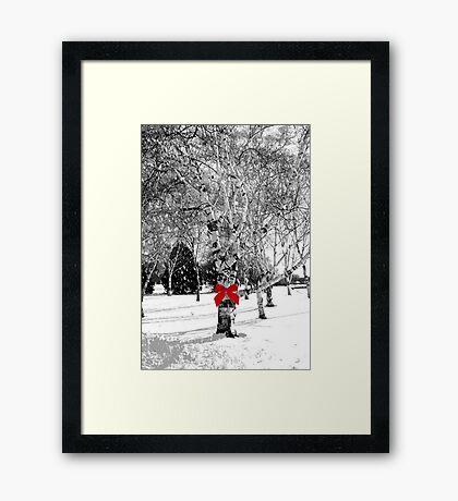 Dreaming of a white Christmas...© Framed Print