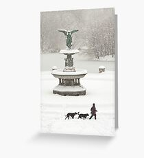 Bethesda Fountain Greeting Card