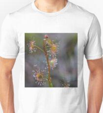 Sundew Unisex T-Shirt