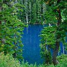 Brunswick Lake Framed by Michael Garson