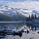 Early Winter at Garibaldi Lake 2 by Michael Garson