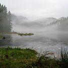 Fog in the Marsh at Minnekhada by Michael Garson