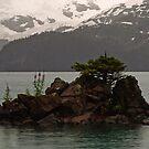 Island in Garibaldi Lake by Michael Garson