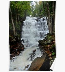 Bear Creek Falls Flowing Fast Poster