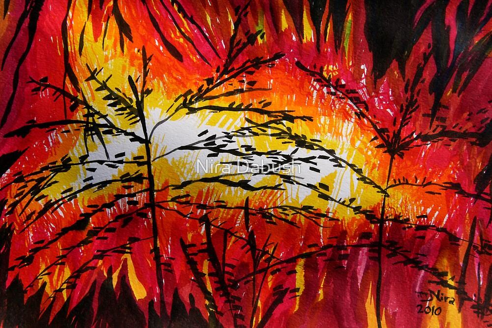 Nature Disaster by Nira Dabush