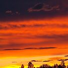 Rooftop Sunset 4 by rocamiadesign