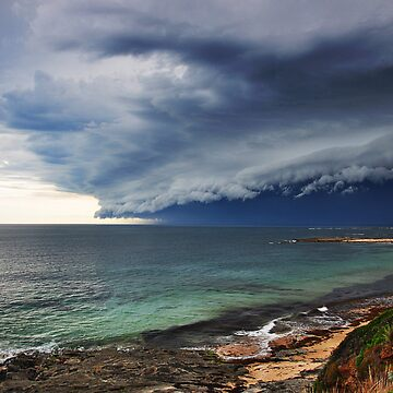"""""""Mega Beast,"""" Cape Paterson by ishbel"""
