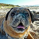 Sand? What Sand? by Barb Leopold
