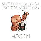 Hoodini by cheezup