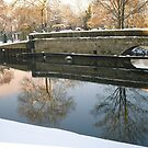 Winter scene by the Trent_3 by Ian Lyall