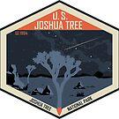 Joshua Tree National Park nachts von moosewop