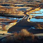 Clear Waterways by Ritva Ikonen