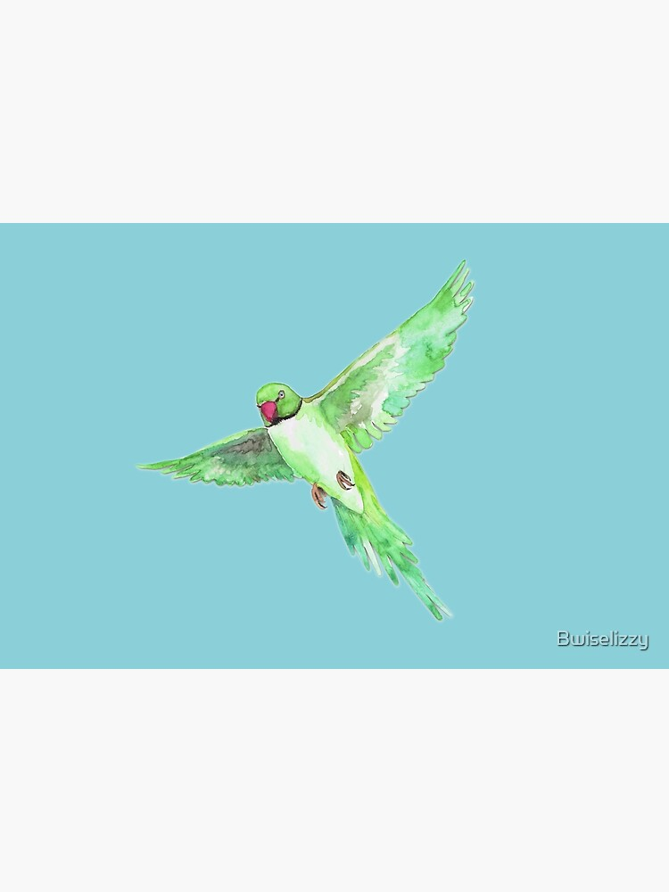 Indian Ringneck Parakeet by Bwiselizzy
