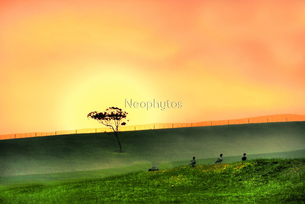 Silent Night  -2 - by Neophytos