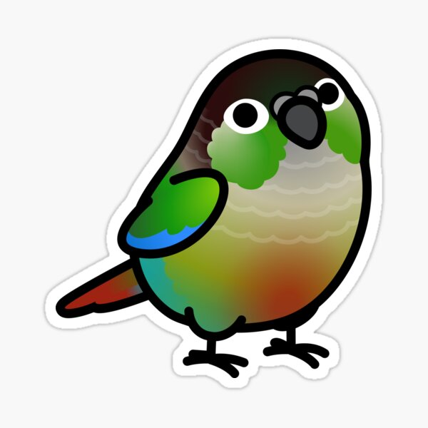Chubby Green Cheek Conure Sticker