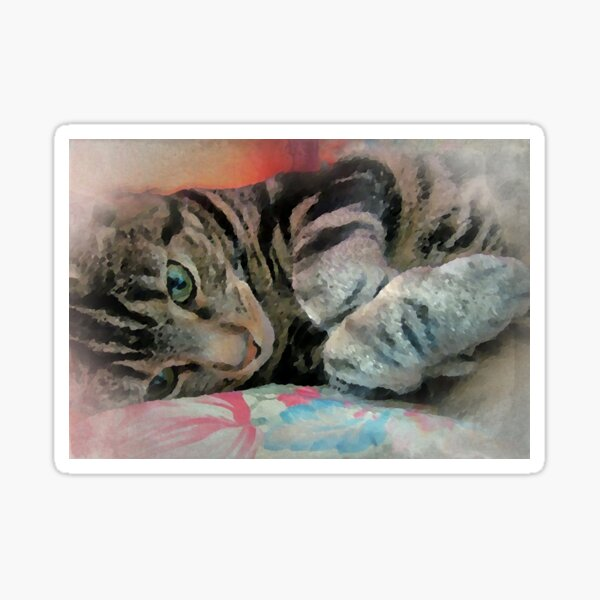 Tabby Kitty on Cushion in Adorable Paws Pose Art Fine Art Sticker