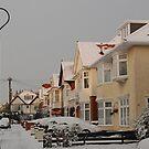 Heavy Snow in Dorset by Alexa Pereira