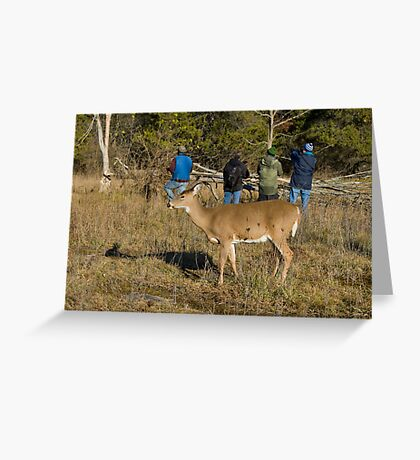 Doe, where is the deer! Greeting Card
