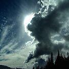 Sky-Scape by Jann Ashworth