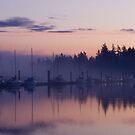 Sailboats at Sunrise by Michael Garson