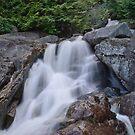 Small Waterfall at Chief Trailhead by Michael Garson