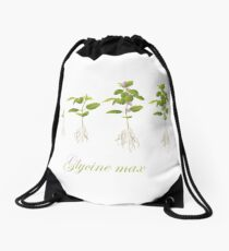 Soybean (Glycine max) plant development Drawstring Bag